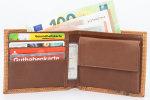 Geldbörse Echsenleder