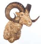 Goldene Oryxtrophäe zum aufhängen an die Wand