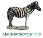 Steppenzebrafell Info