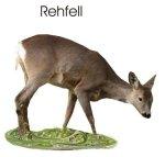 Rehfell Info