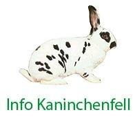 Kaninchenfell Info