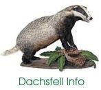Dachsfell Info