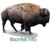 Bisonfell Info