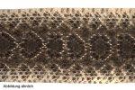 Klapperschlangenleder 145-155cm