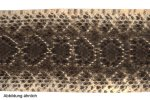 Klapperschlangenleder 165-175cm