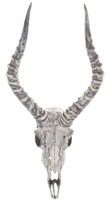 Impalatrophäe