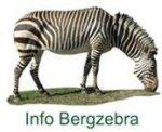 Bergzebrafell Info